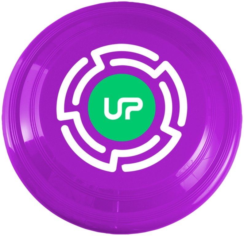Frisbees - 9 Inch Promotional Frisbee
