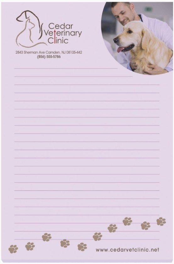 Custom Sticky Notes-Bic 4 x 6 100 Sheet