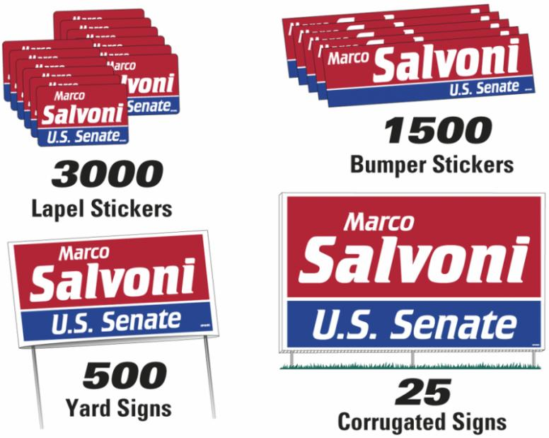 Political Campaign Kit-Senate